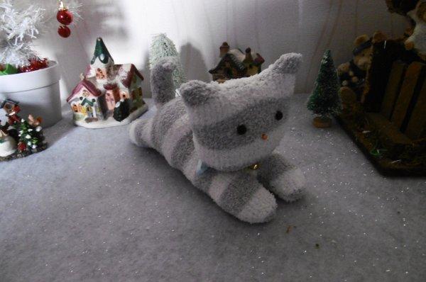 Mon premier petit chat avec des chaussettes