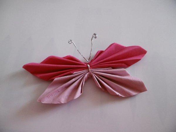 Un papillon s'invite dans votre assiette ,