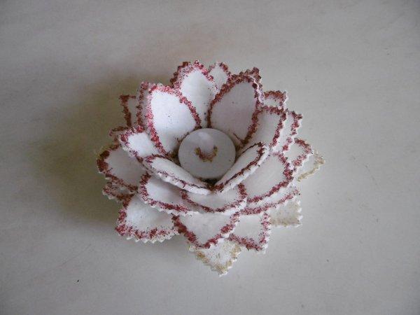Une fleur led avec des cotons à démaquiller .