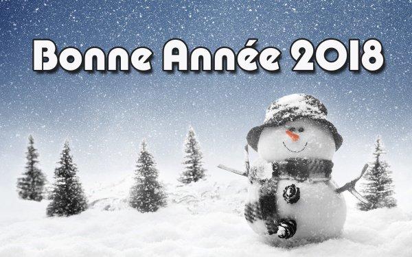 Bonne et heureuse Année 2018 à vous Mes Amies ( is )