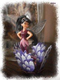 Petites fées KINDER et jolie boîte en métal