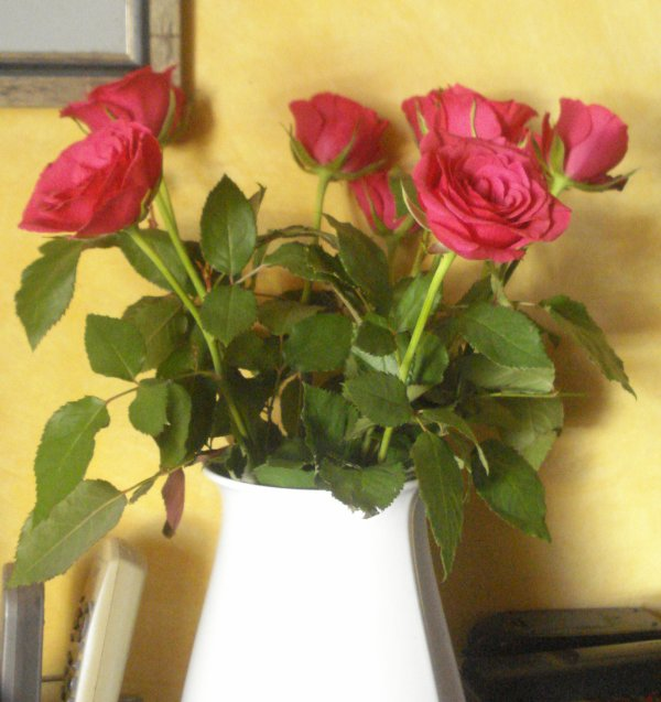 ♥ un beau bouquet de roses ♥