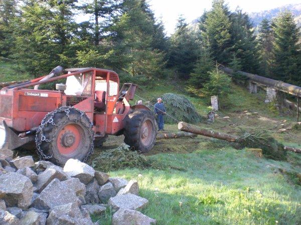 Forestier 2011 --> --> Timberjack 240 E super E