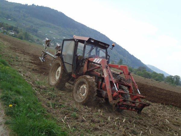 Labours 2011 --> --> Fiat Agri 65-90