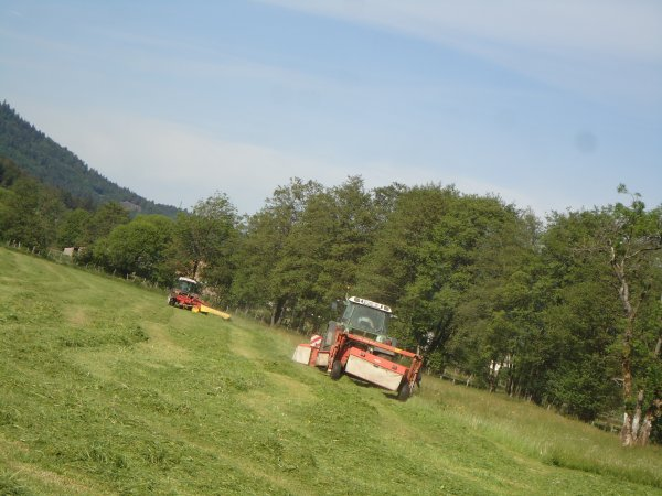 Fauchage 2011 --> --> Fendt 412 Farmer