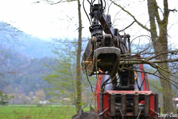 Débardage 2012 --> --> Camox F140