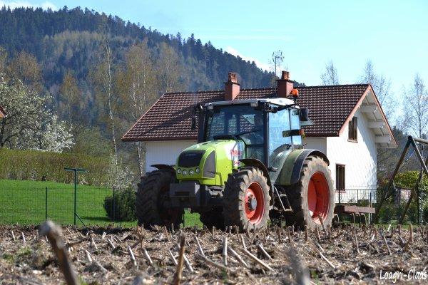 Déchaumage 2012  --> --> Claas Celtis 456 rx