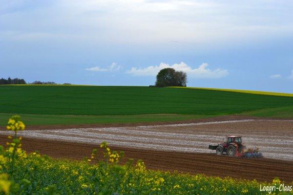 Semis de Maïs 2012 --> --> Valtra T120