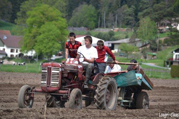 Plantation de Pommes de Terres 2012 --> --> Mc Cormick Farmall F 135 D