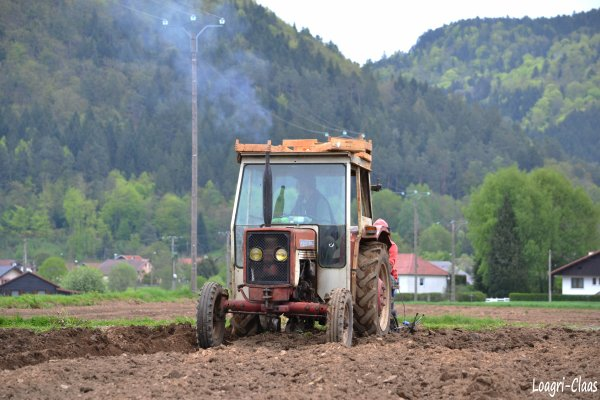 Plantation de Pommes de Terres 2012 --> --> International 323