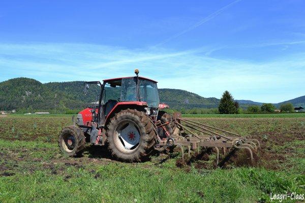 Préparations des Terres 2012 --> --> Mc Comick CX 85