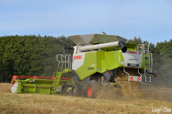Moisson 2012 - Big Harvest --> --> Claas Lexion 770 TT & V900