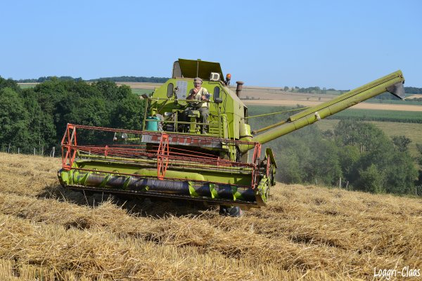 Moisson 2012 --> --> Claas Mercator
