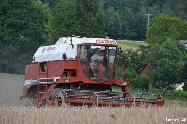 Moisson 2012 --> --> Laverda Fiat Agri 3700