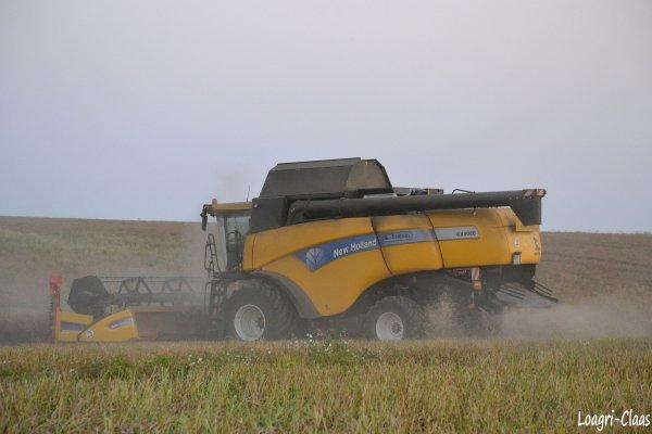 Moisson 2012 --> --> New-Holland CX 8080