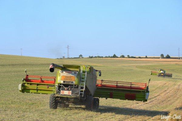 Moisson 2012 - Big Harvest --> --> Claas Lexion 770 TT & 1200 Vario !!!