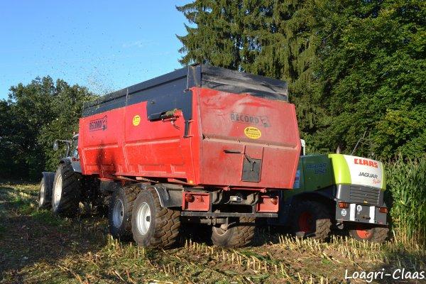 Ensilage de Maïs 2012 --> --> Claas Jaguar 850 & Krone