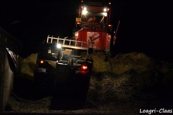 Ensilage de Maïs de Nuit 2012 --> --> Claas Jaguar 870 Profistar