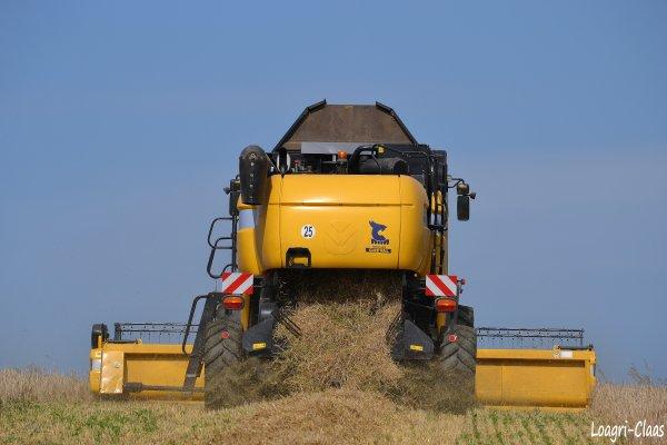 Moisson 2012 --> --> New-Holland CX 8070
