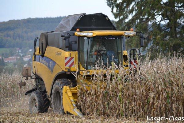 Moisson du Maïs 2012 --> --> New-Holland CX 8040
