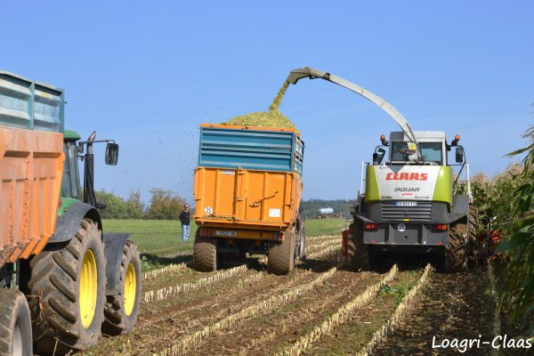 Ensilage de Maïs 2012 --> --> Claas Jaguar 830  [ Part I ]