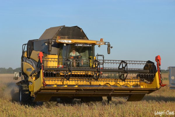 Moisson du Colza --> --> New-Holland Cx 760