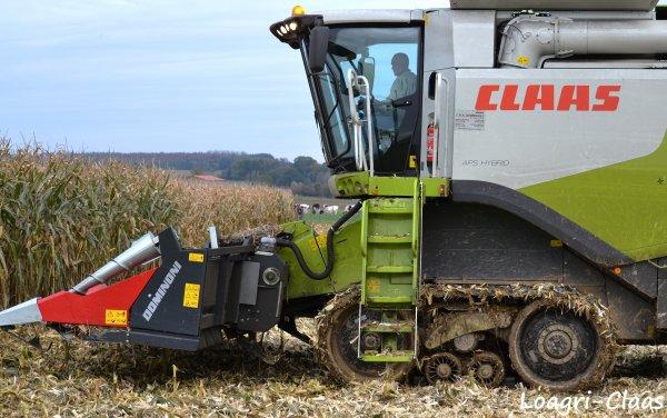 Moisson Du Maïs 2012 --> --> Claas Lexion 770 Terra Trac