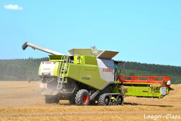 Moisson 2012 - Big Harvest --> --> Claas Lexion 770 TT
