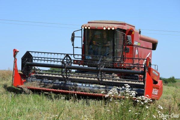 Moisson du Colza 2012 --> --> Laverda 225 Rev