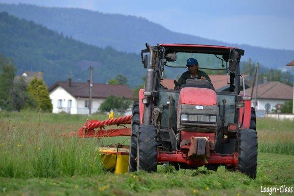 Fauchage 2012 --> --> Mc Cormick Cx85
