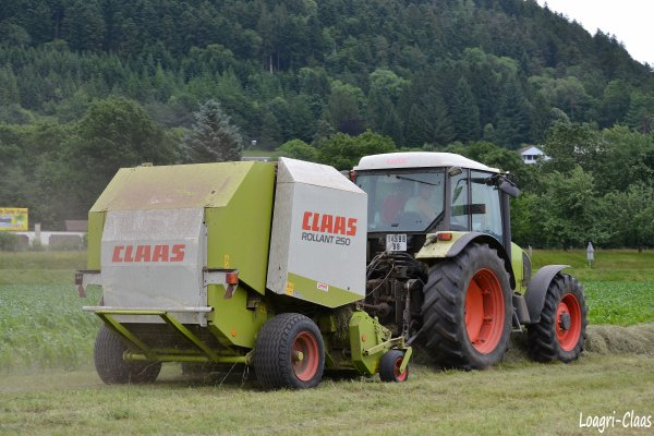 Pressage 2012 --> --> Claas Celtis 456 RX