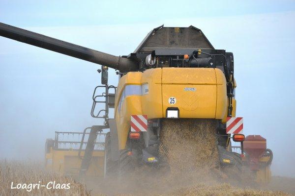 Moisson 2012 --> --> New-Holland Cx 8040
