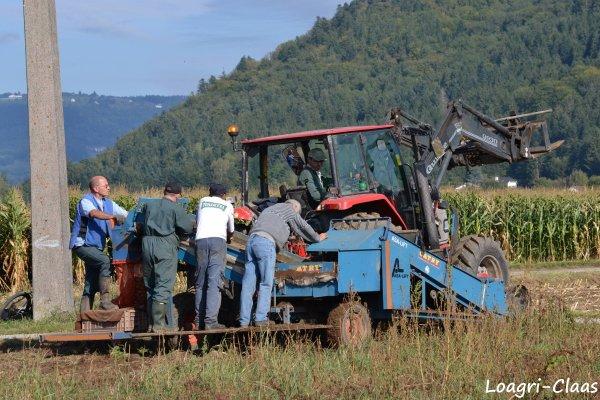 Arrachages des Pommes de Terres 2012 --> --> Mc Cormick Cx 85
