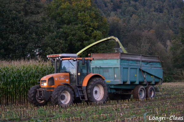 Ensilage de Maïs 2012 --> --> Claas Jaguar 800