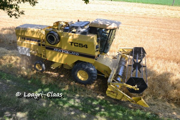 Moisson 2013 --> --> New-Holland TC 54