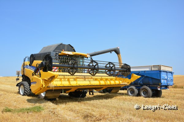 Moisson 2013 --> --> New-Holland Cx 8080
