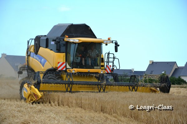Moisson 2013 --> --> New-Holland Cx 8070