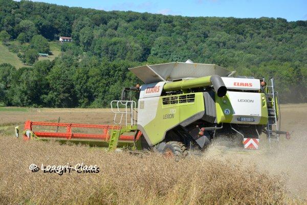 Moisson-Harvest 2013 --> --> New Claas Lexion 770 Terra Trac [SARL Theveny ]
