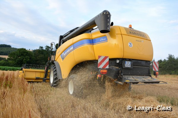 Moisson 2013 --> --> Nouvelle New-Holland Cx 6080