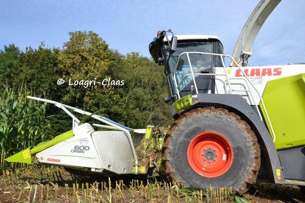 Ensilage de Maïs 2013 --> --> Claas Jaguar 940
