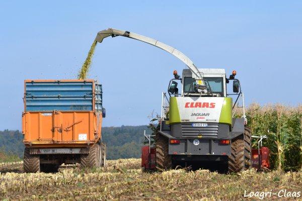 Ensilage de Maïs 2012 --> --> Claas Jaguar 830