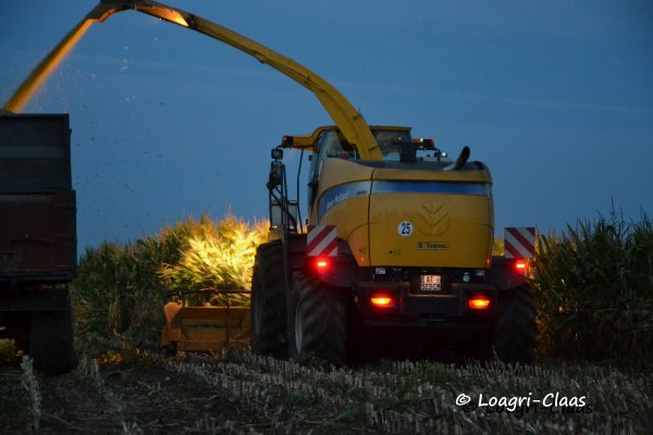 Ensilage de Maïs --> --> New-Holland FR 9060