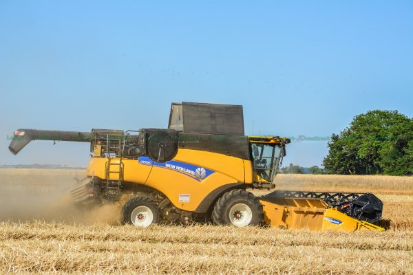 BIG HARVEST 2015 | NEW-HOLLAND CR9.80 & Cx8080