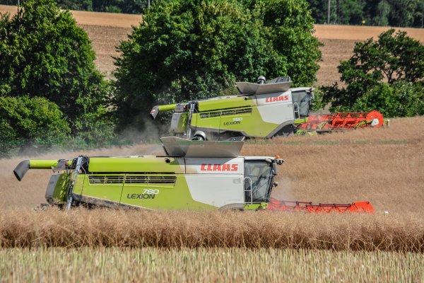 XXL Harvest : 3 Claas Lexion 780-770 & John Deere 8370R & Perard Interbenne 38 !!!