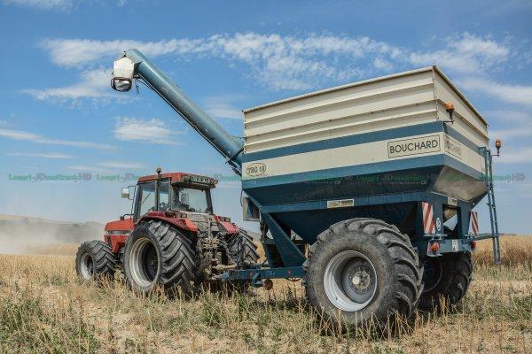 Moisson 2015 | Case Ih 9120 à Chenilles | Case Magnum & Transbordeur Bouchard