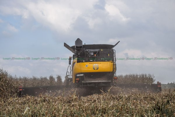 NEW-Holland CR9.90 à Chenilles et Cueilleur CaseIH 16 Rangs en FRANCE : Moisson du Maïs grain 2015 !