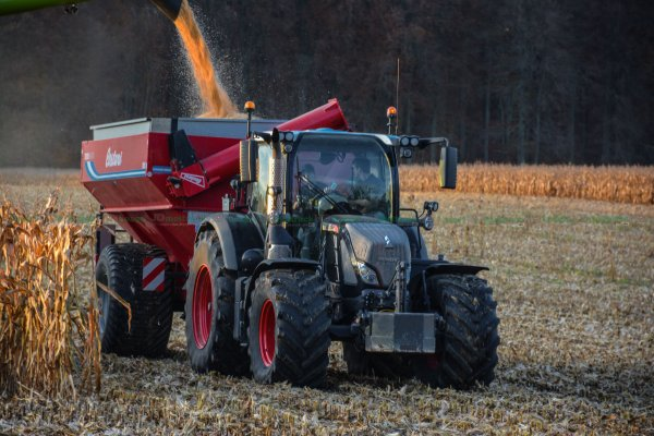 Moisson du Maïs Grain 2015 | Claas Lexion Preseries & Oros 12 rangs