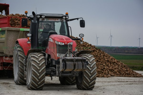 Repoussage du Tas de Betteraves | Manitou MLT 741-120 LSU Turbo & Sopema