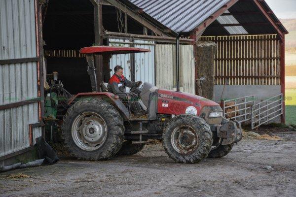 Une matinée à la ferme avec plus de 1000 Taurillons