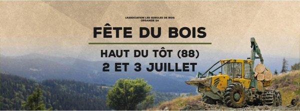 Fête du Bois & Concours de Débardage avec l'association des Gueules de Bois dans les Vosges, les 02 et 03 Juillet 2016 !